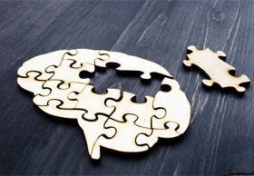 Brain as a puzzle